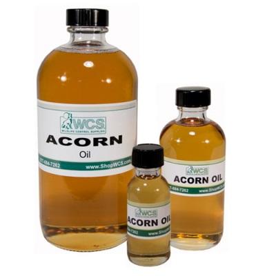Acorn eļļa
