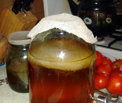 Kombucha gėrimas naudojamas gyvuliams ir naminiams paukščiams gydyti