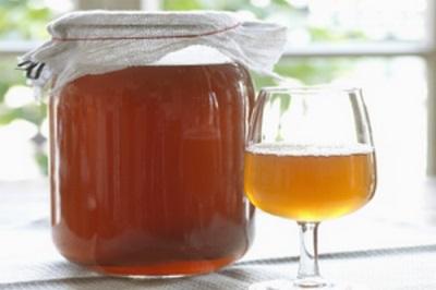 Termos de uso da infusão de fungos do chá para fins medicinais