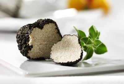 Трюфелите имат ценен химичен състав.