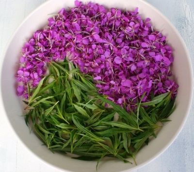 Valor nutricional y contenido calórico del té de sauce.