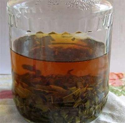 Ivan tea gyógyászatban