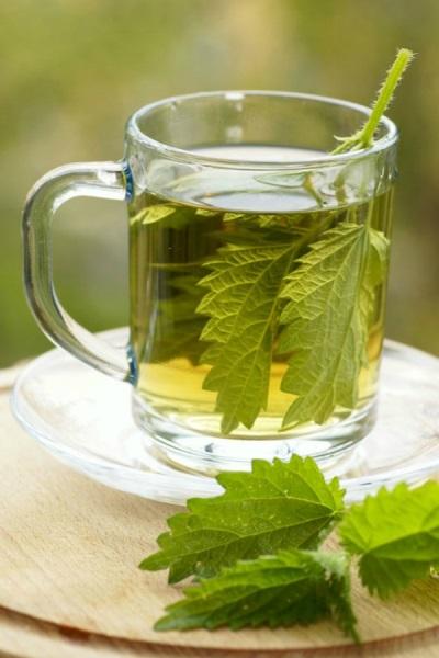 Чайове и отвари с коприва