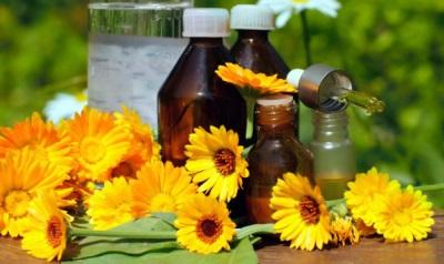 Характеристики на масло от невен