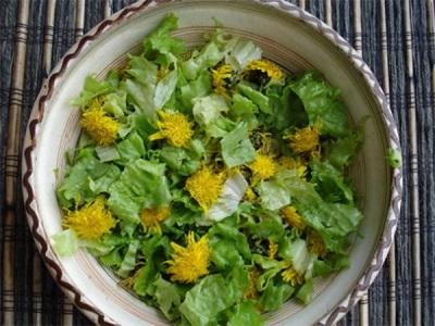 Pavasara un kārklu salāti