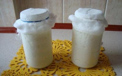 Der Prozess der Herstellung von Milchpilzgetränken