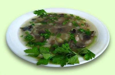 Aspen zupa
