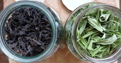Chá de salgueiro de fermentação