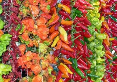 Szárított chili paprika