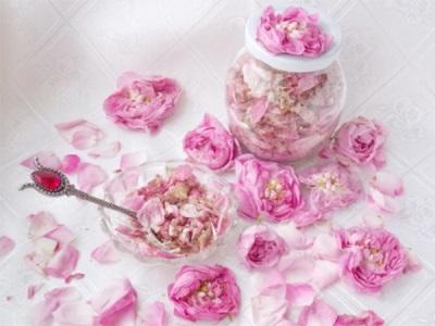 Rosenblüten in Zucker